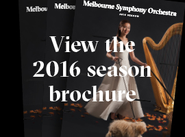 2016 Subs Brochure