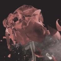Tchaikovsky_flower