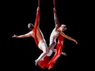 Alexander Streltsov & Christine Van Loo - Aerial Duo 01.jpg
