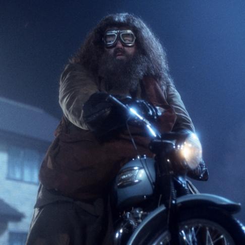 Hagrid_Harry Potter