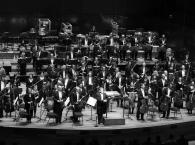 Melbourne-Symphony-Orchestra.jpg