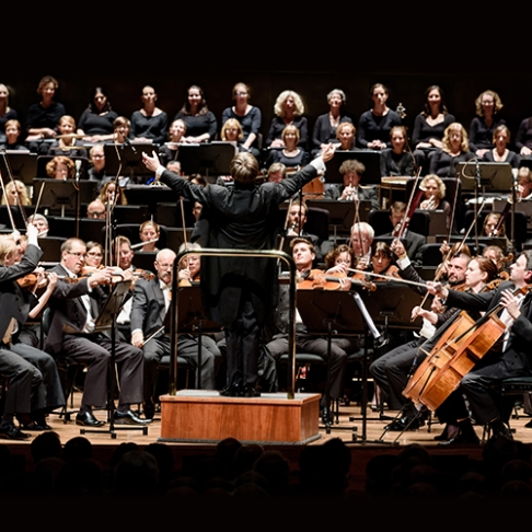 An Evening With MSO