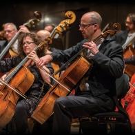MSO Cellist Rohan de Korte | Image credit: Lucas Dawson