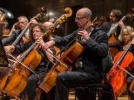Orchestra-59_sml.jpg